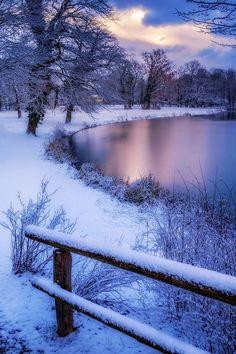 winter-image
